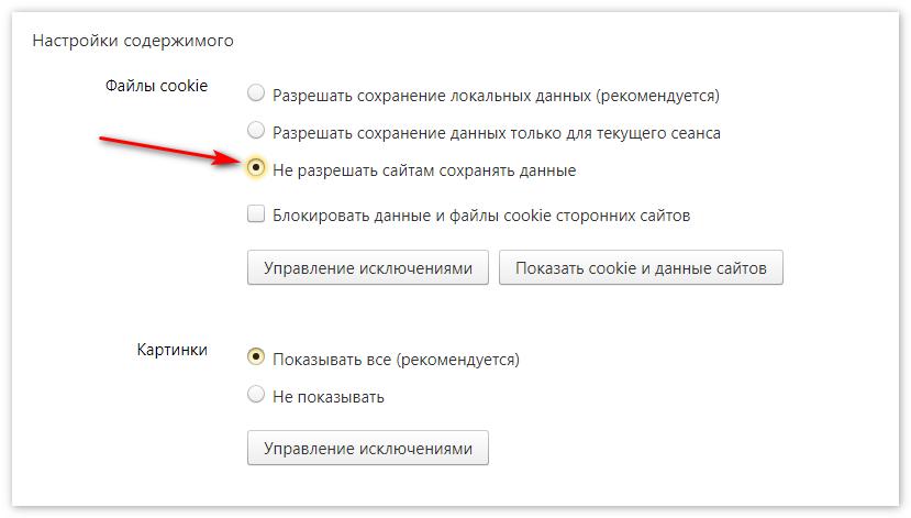 Не сохранять данные Яндекс Браузер