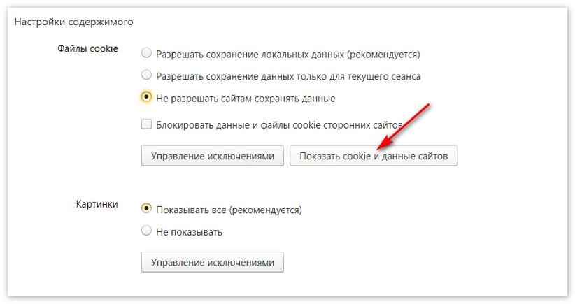Показать куки Яндекс Браузер